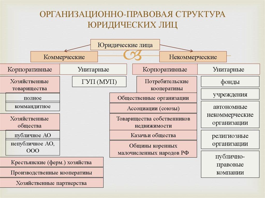Виды организационно правовых форм юридических лиц в 2021 году